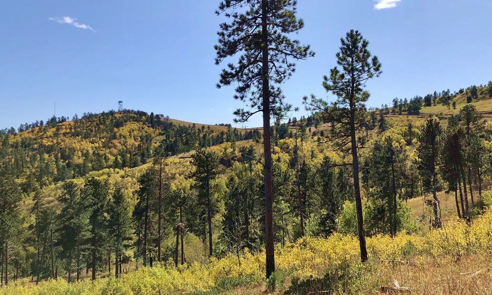 Crook County Parks & Outdoors